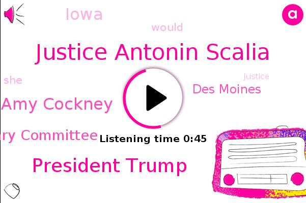 Justice Antonin Scalia,President Trump,Senate Judiciary Committee,Amy Cockney,Des Moines,Iowa