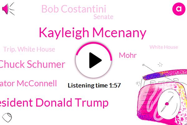 President Trump,Kayleigh Mcenany,President Donald Trump,Russia,Afghanistan,Chuck Schumer,Senator Mcconnell,Senate,Mohr,Europe,Trip. White House,White House,Bob Costantini,Press Secretary,New York,Taliban,Congress,Apple,Fraud
