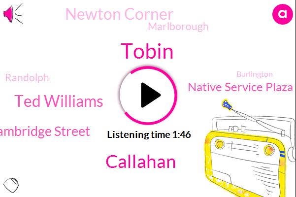Callahan,Cambridge Street,Tobin,Native Service Plaza,Marlborough,Randolph,Burlington,Ted Williams,Norwood,Newton Corner