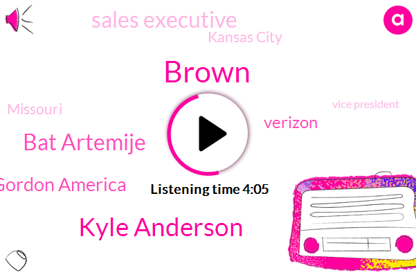 Kyle Anderson,Brown,Verizon,Sales Executive,Amphetamine,Kansas City,Bat Artemije,Gordon America,Missouri,Vice President
