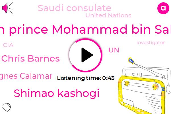 Saudi Consulate,UN,Crown Prince Mohammad Bin Salman,Murder,Shimao Kashogi,Chris Barnes,Washington Post,United Nations,CIA,Agnes Calamar,Investigator,USA,Turkey