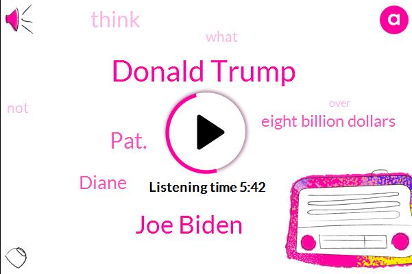 Donald Trump,Joe Biden,Pat.,Diane,Eight Billion Dollars