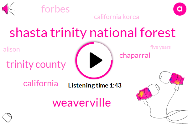 Shasta Trinity National Forest,Weaverville,Trinity County,California,Chaparral,Forbes,California Korea,Alison,Five Years