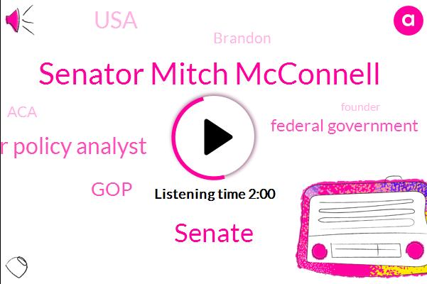 Senator Mitch Mcconnell,Senate,Senior Policy Analyst,GOP,Federal Government,USA,Brandon,ACA,Founder,Three Year