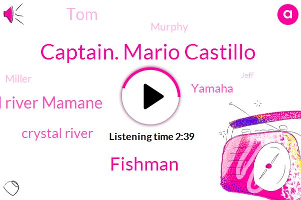 Captain. Mario Castillo,Fishman,Crystal River Mamane,Crystal River,Yamaha,TOM,Murphy,Miller,Jeff,Caffeine,Three Inch