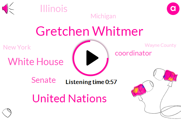 New York,Coordinator,Illinois,Wayne County,Michigan,Gretchen Whitmer,United Nations,White House,Detroit,Senate