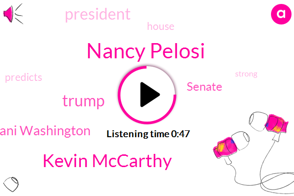 Nancy Pelosi,Senate,Kevin Mccarthy,Donald Trump,President Trump,Ani Washington
