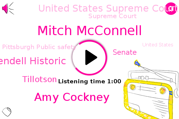 United States Supreme Court Majority,Senate,Supreme Court,Mitch Mcconnell,Amy Cockney,United States,Allegheny County,Heparin,Pittsburgh Public Safety,Wendell Historic,Tillotson,Director