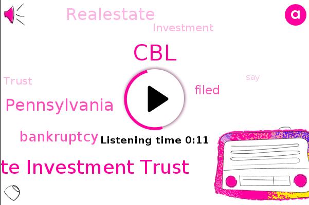 Realestate Investment Trust,CBL,Pennsylvania