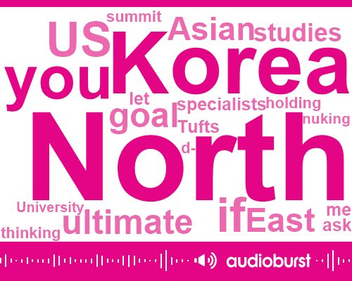 North Korea,South Korea,United States,KIM,South Vietnam,Tufts University,Konami,China,One Year