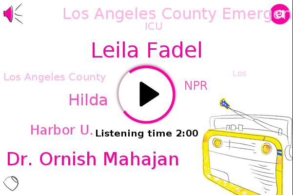 Leila Fadel,Dr. Ornish Mahajan,Harbor U.,Los Angeles County,Hilda,NPR,Los Angeles County Emergency Medical Services Agency,ICU