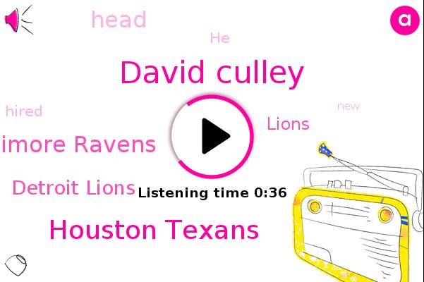 David Culley,Houston Texans,Baltimore Ravens,Detroit Lions,Lions
