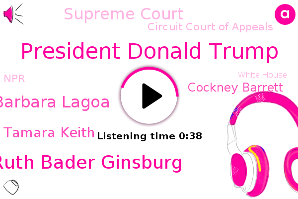 President Donald Trump,Supreme Court,Justice Ruth Bader Ginsburg,Circuit Court Of Appeals,Barbara Lagoa,Tamara Keith,FOX,Cockney Barrett,NPR,White House,Senate