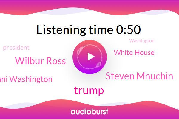 Donald Trump,President Trump,Steven Mnuchin,Wilbur Ross,Washington,White House,Ani Washington