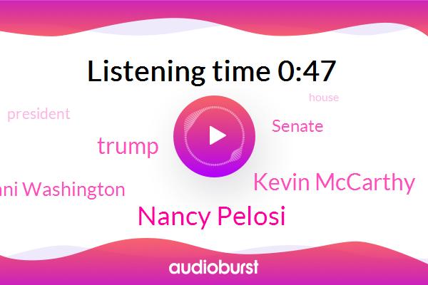 Nancy Pelosi,Senate,Kevin Mccarthy,Donald Trump,President Trump,Ani Washington