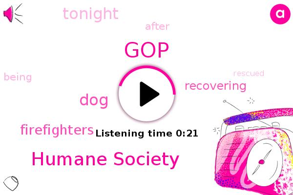 GOP,Humane Society