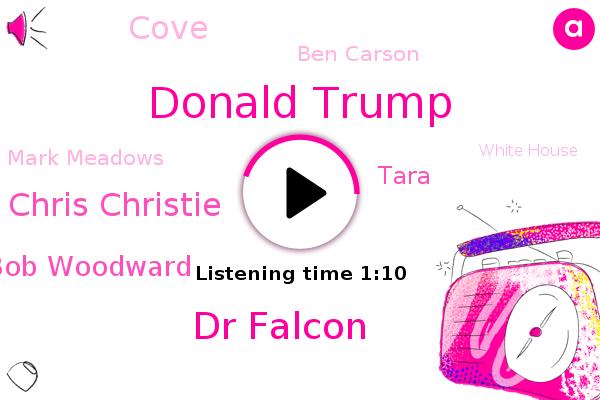 Donald Trump,Dr Falcon,Chris Christie,FLU,Bob Woodward,Tara,Asthma,Cove,Diabetes,Ben Carson,White House,Mark Meadows