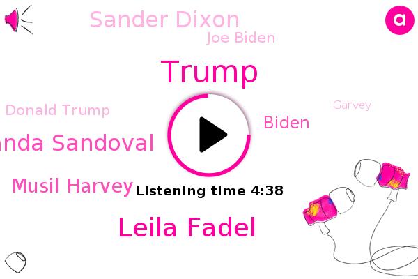 Nevada,Leila Fadel,Amanda Sandoval,Musil Harvey,Biden,Donald Trump,Sander Dixon,NPR,Joe Biden,Columbia University,Garvey,Democratic Party,Dante Walker,Candice,Bytom