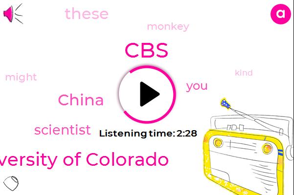 Listen: Chinese scientists insert human brain gene into monkeys