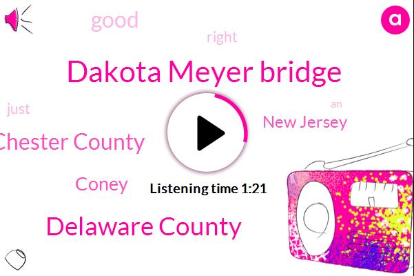 Dakota Meyer Bridge,Delaware County,Chester County,Coney,New Jersey