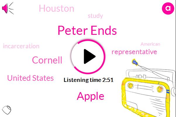Peter Ends,Apple,Cornell,United States,Representative,Houston