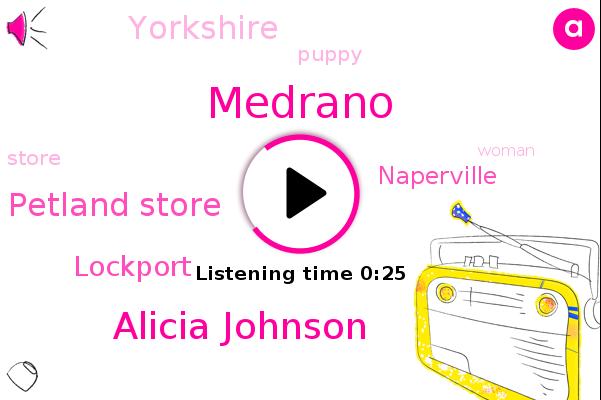 Alicia Johnson,Medrano,Petland Store,Lockport,Naperville,Yorkshire