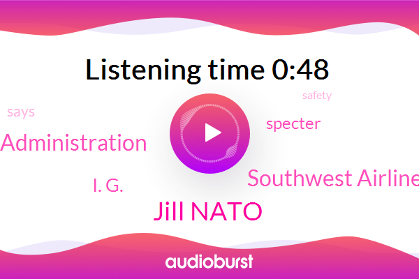 Southwest Airlines,Jill Nato,Federal Aviation Administration,I. G.,Specter