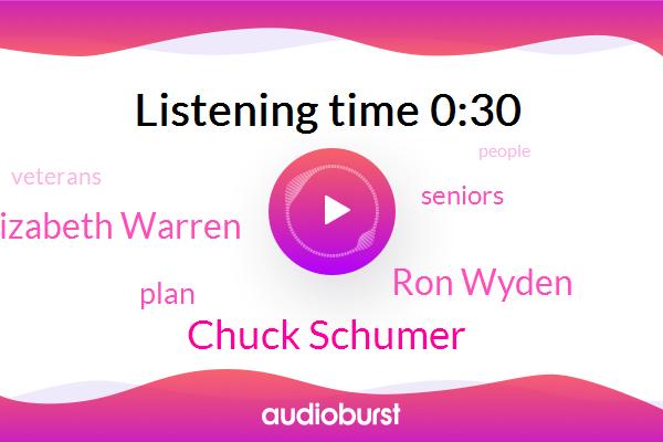 Chuck Schumer,Ron Wyden,Elizabeth Warren