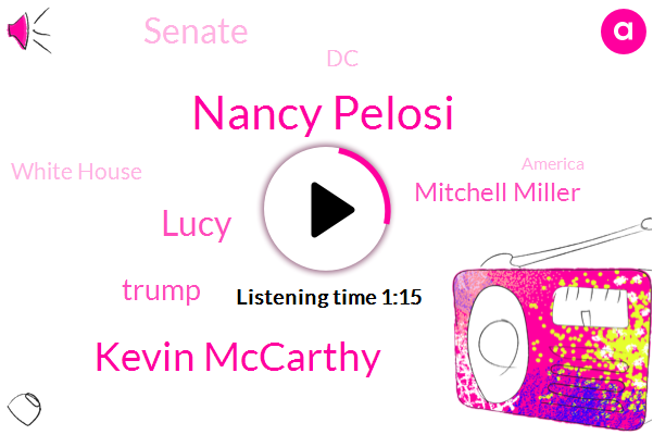 Nancy Pelosi,America,Kevin Mccarthy,Senate,Lucy,DC,Donald Trump,President Trump,Mitchell Miller,White House