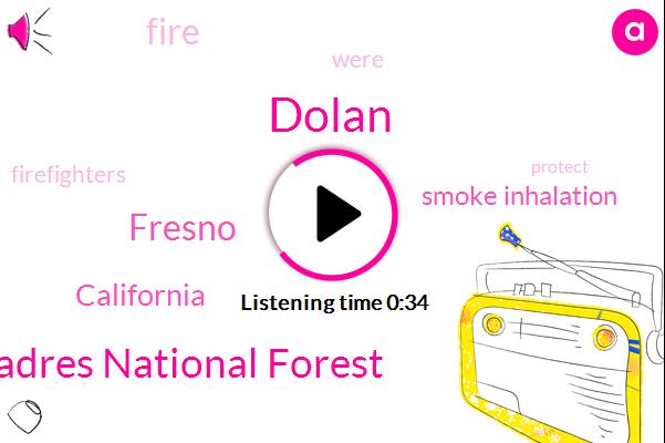 Los Padres National Forest,Dolan,Smoke Inhalation,Fresno,California