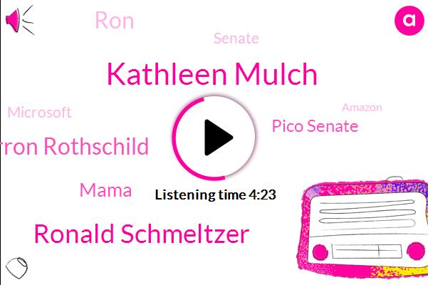AI,Kathleen Mulch,Ronald Schmeltzer,Senate,Barron Rothschild,Mama,Microsoft,Pico Senate,London,Amazon,RON,Apple