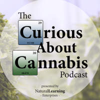 A highlight from BTS #59 Tarris Batiste of Dont Let It Smoke You on Finding a Mature Relationship with Cannabis