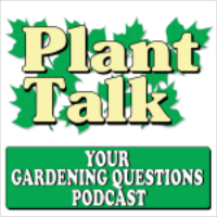 A highlight from When Can I Start My Cool Weather Plants for the Garden?