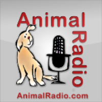 A highlight from 1121. Is Your Dog Laughing At You Behind Your Back? Actress Katie Cleary Guests