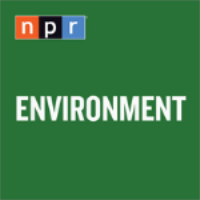 A highlight from Biden's Civilian Climate Corps Would Tackle Climate Change, Care For Public Lands