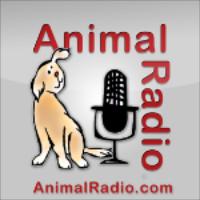 A highlight from 1131. Dog Is My Co-Pilot. Brian Jones Translates Doglish To English