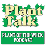 Plant Of The Week