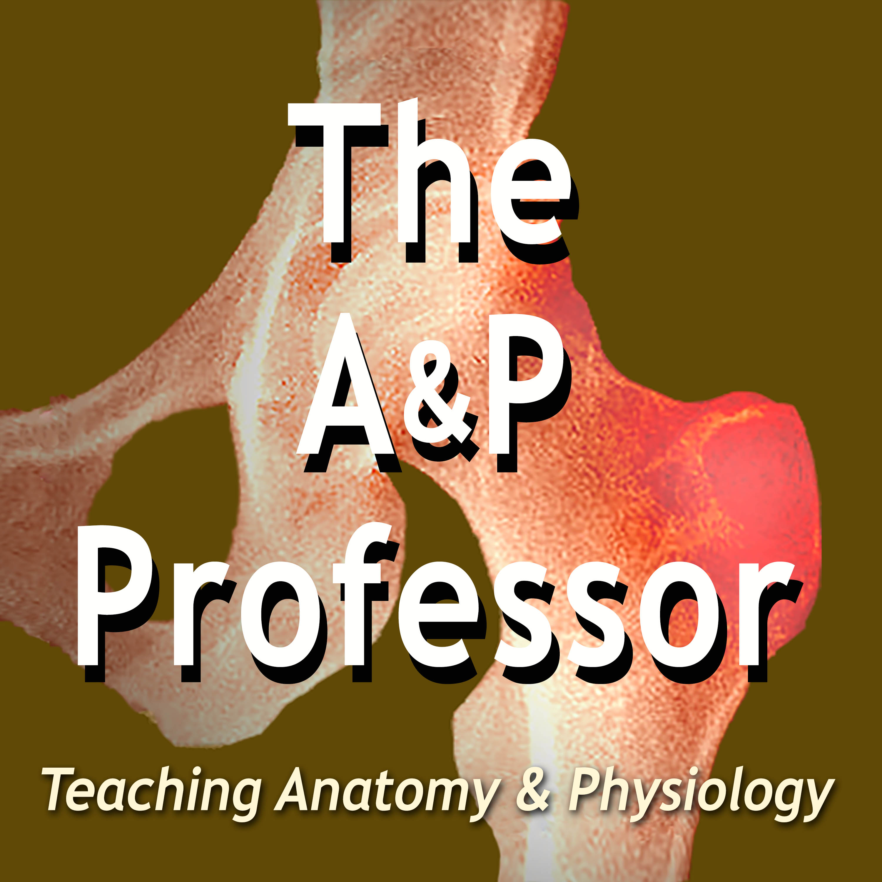 A highlight from More Slide Tricks | Effective Teaching Presentations | TAPP 95