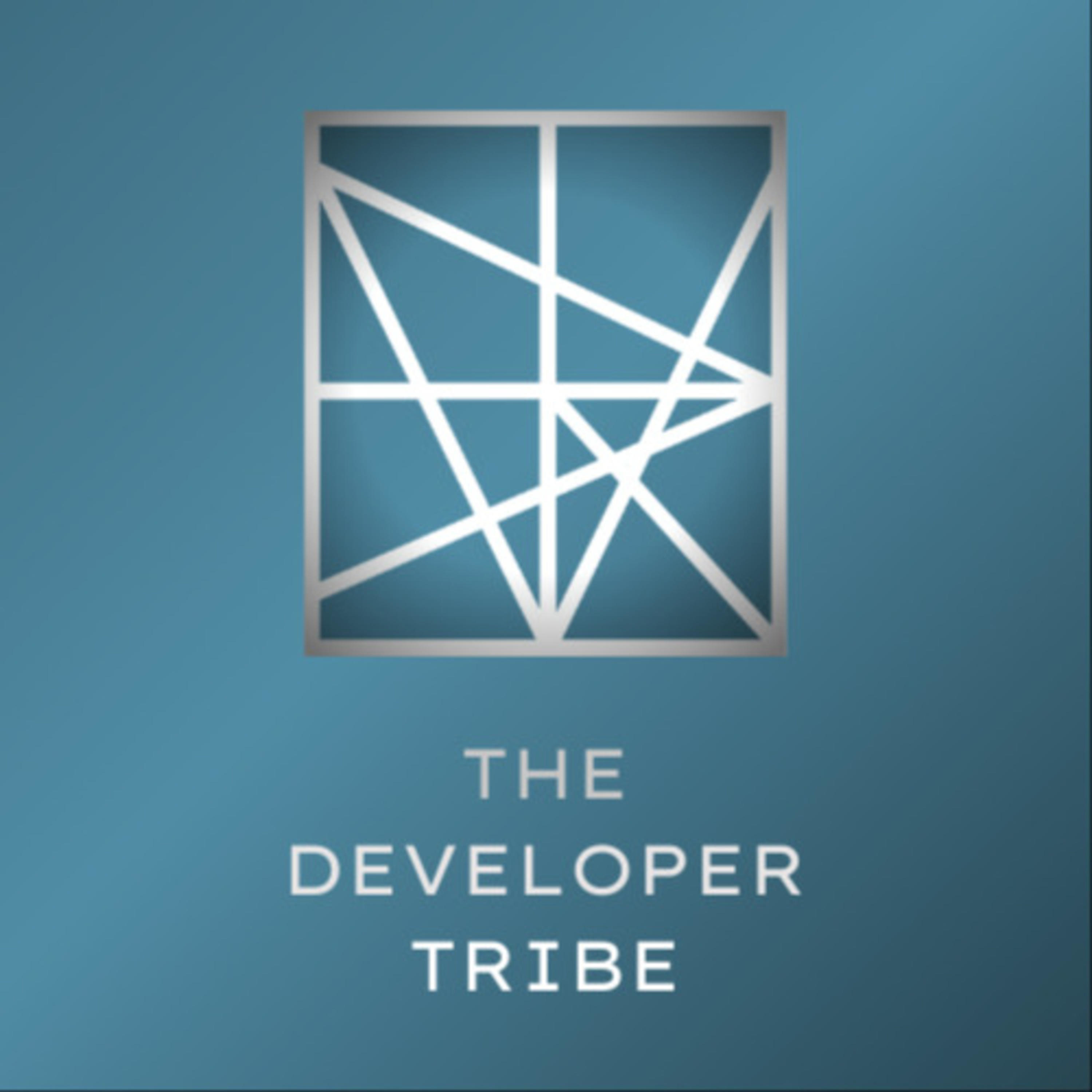 Interview With Dr Noora Ronkainen of the Developer Tribe